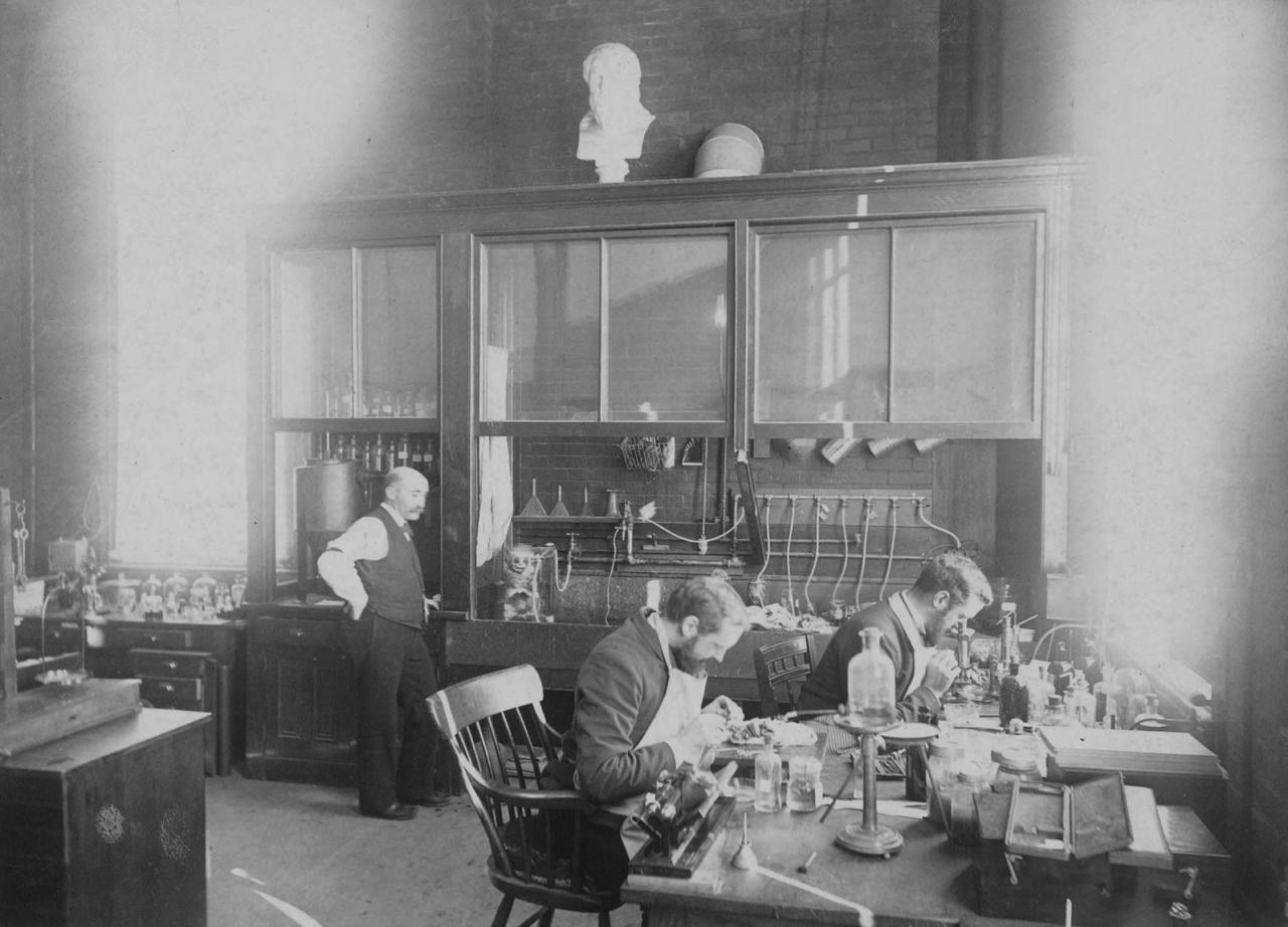 Students at the anatomy laboratory of the Harvard Medical School, ca ...