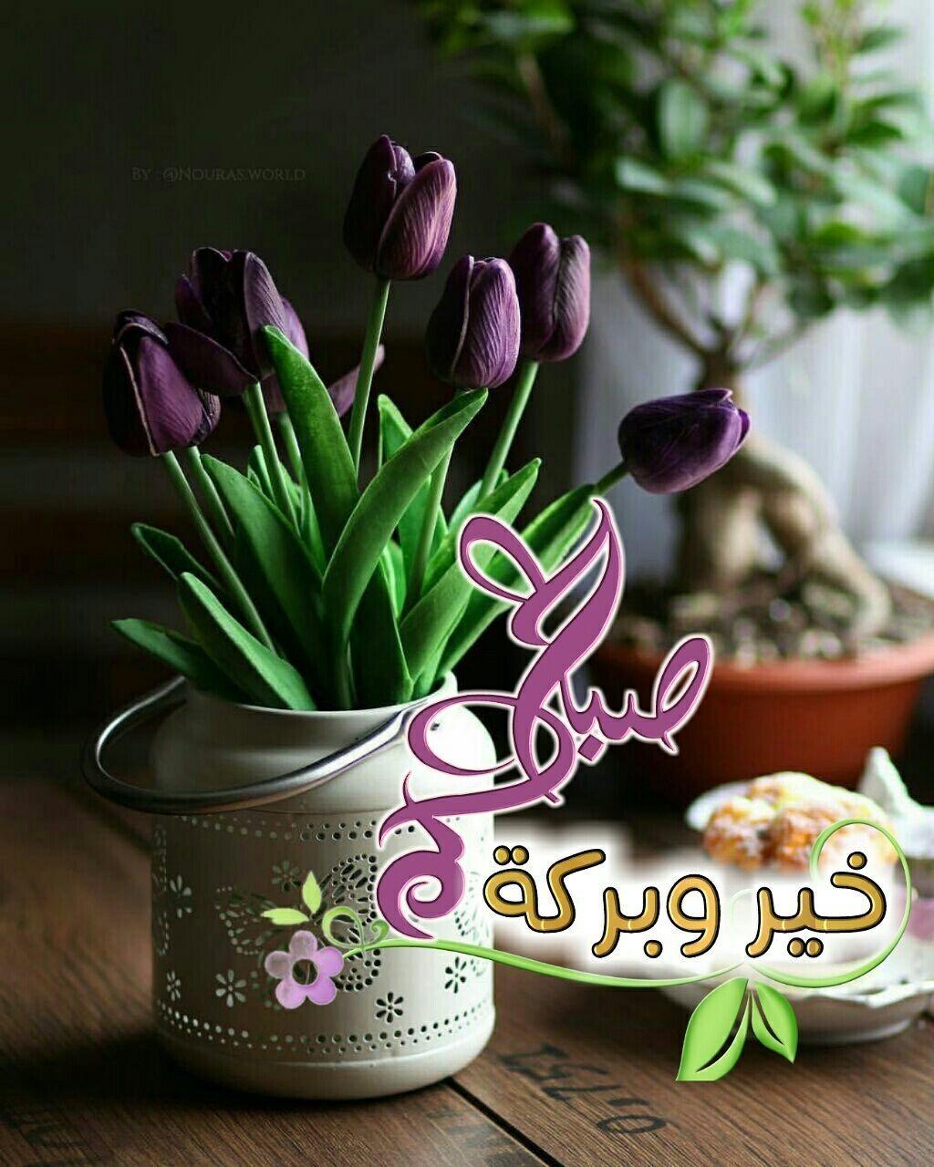 صباحكم خير و بركة Morning Greeting Morning Images Good Morning