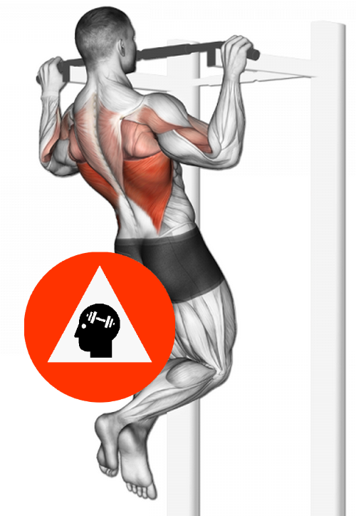 Pin On Exercices De Musculation