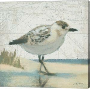 Beach Bird I By James Wiens Canvas Art Beach Canvas Wall Art