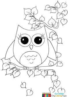 Ausmalbilder Süße Eulen Schablonen Drucken Ausmalen Owl Coloring