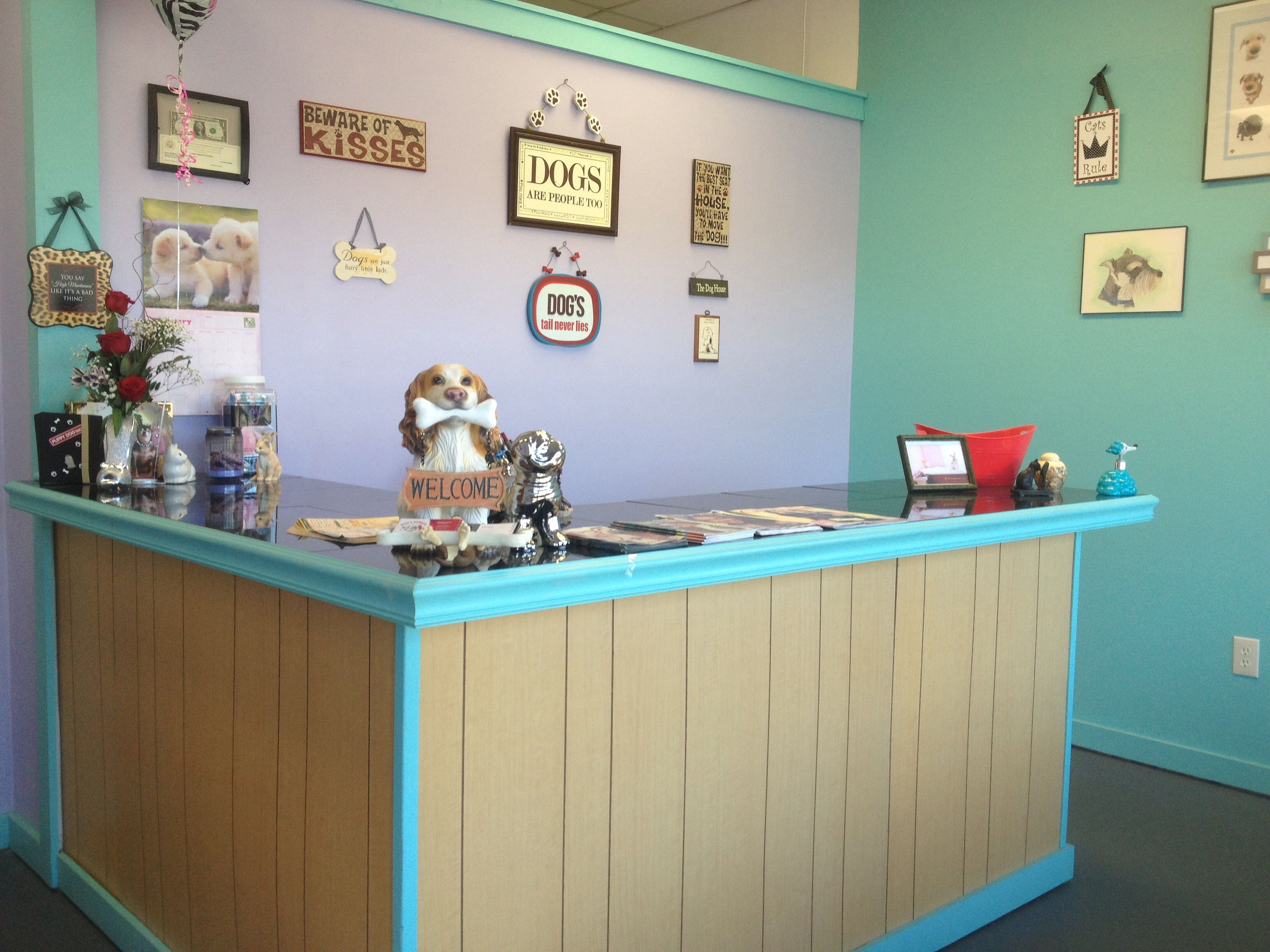 RepinnedBleu's bubbles pet salon front desk. Dog