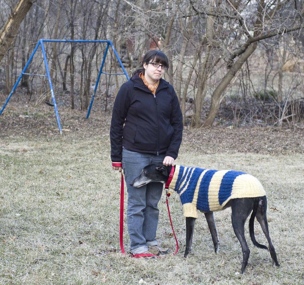 Exelent Greyhound Coat Knitting Pattern ... (With images ...