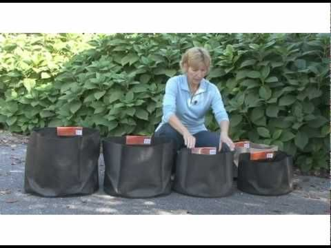 Container Gardening Made Easy With Smart Pots Lightweight Fabric Planters