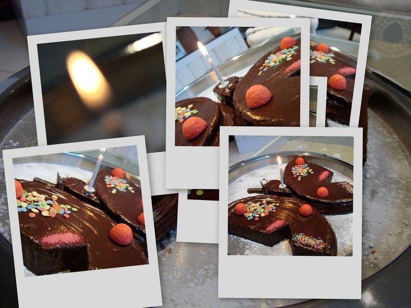 gâteau papillon 3