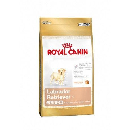 Pin By Stephanie Akridge On Stuff For My Future Pet Dog Food Recipes Royal Canin Dog Food Dog Food Online