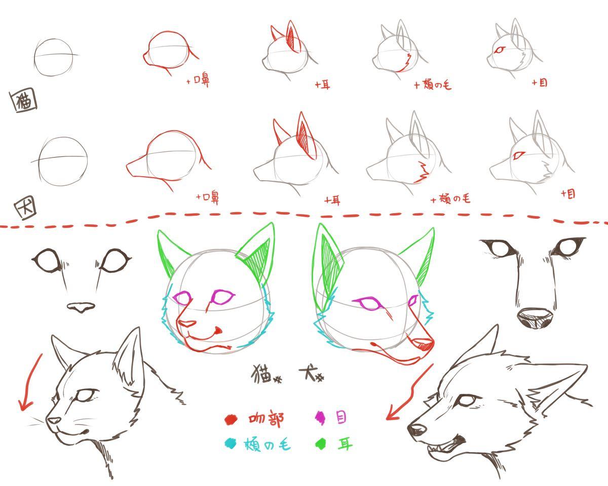 自己流犬と猫の描き方 2 Stuff For Art 猫 描き方 絵の描き方