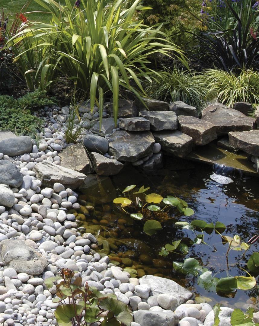 Basic look for pond surround water features garden for Garden duck pond design