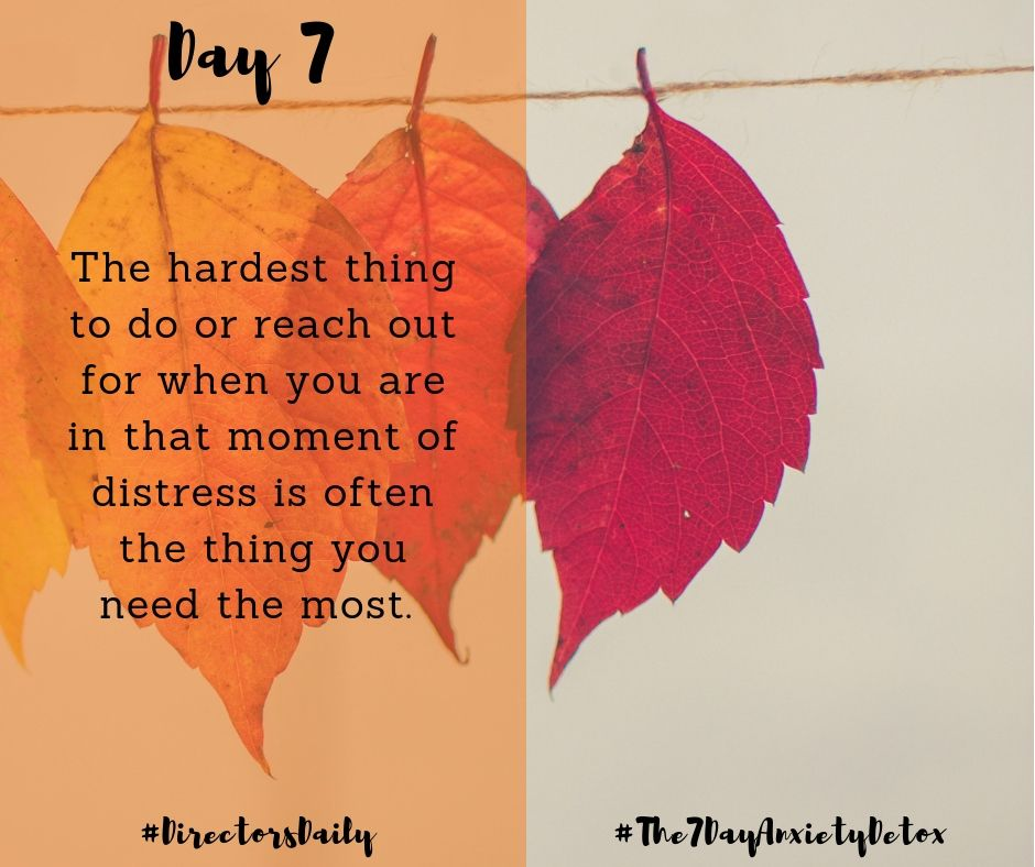 """DirectorsDaily The7DayAnxietyDetox """"It is so easy to"""