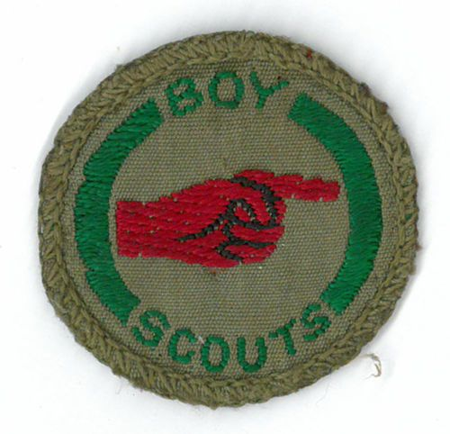 New scout activity badges unveiled by Scout Association ...