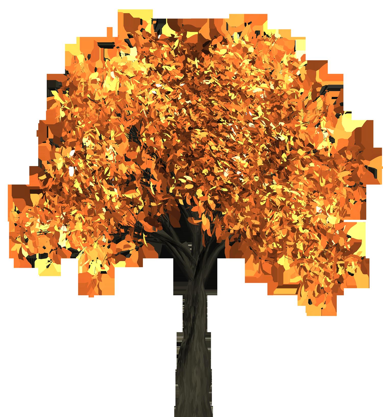 Autumn Tree Png Image Autumn Trees Tree Autumn