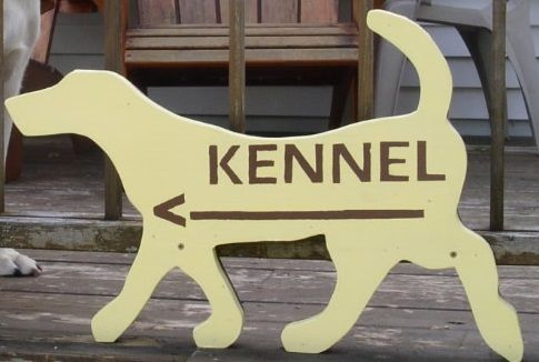 Pin By Lisa Ambort On Pet Health Tips Tricks Dog Hotel Dog Boarding Ideas Pet Resort