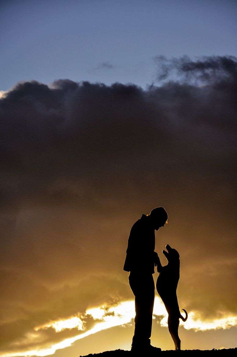 Happy Sudland Park El Paso Texas Usa Silhouettes Silhouette Photography I Love Dogs Animal Photography