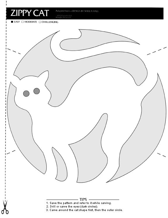 Free Kitty Cat Pumpkin Carving Pattern Craft Ideas Pumpkin