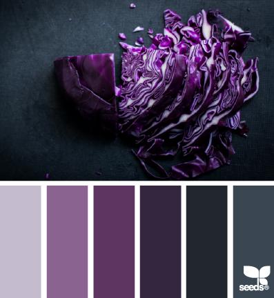 Chopped Hues Purple Plum Paintpalettes