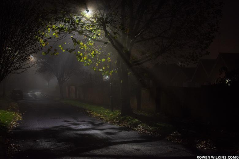 #rowenwilkins #uk #night #nightphotography #light #streetart #photography #photo #photographylovers #photographylife #photographyart #photographyislife #photographyeveryday #lightbeamz #streetphotography #streetartphotography #street #lightbeam #lightbeams #nightimages #tree #trees
