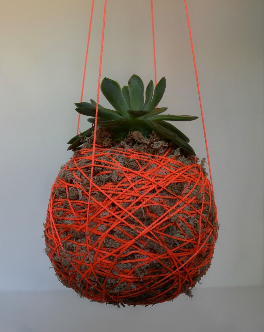 diy hanging moss ball planter l hanging string plant - Diy Hanging Planter