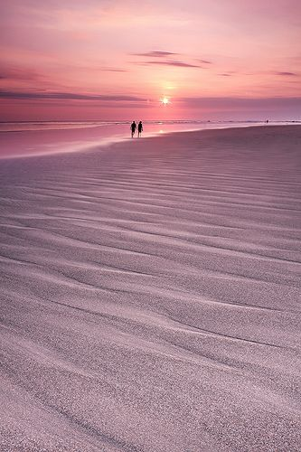 A walk on the beach in a pink sunset.