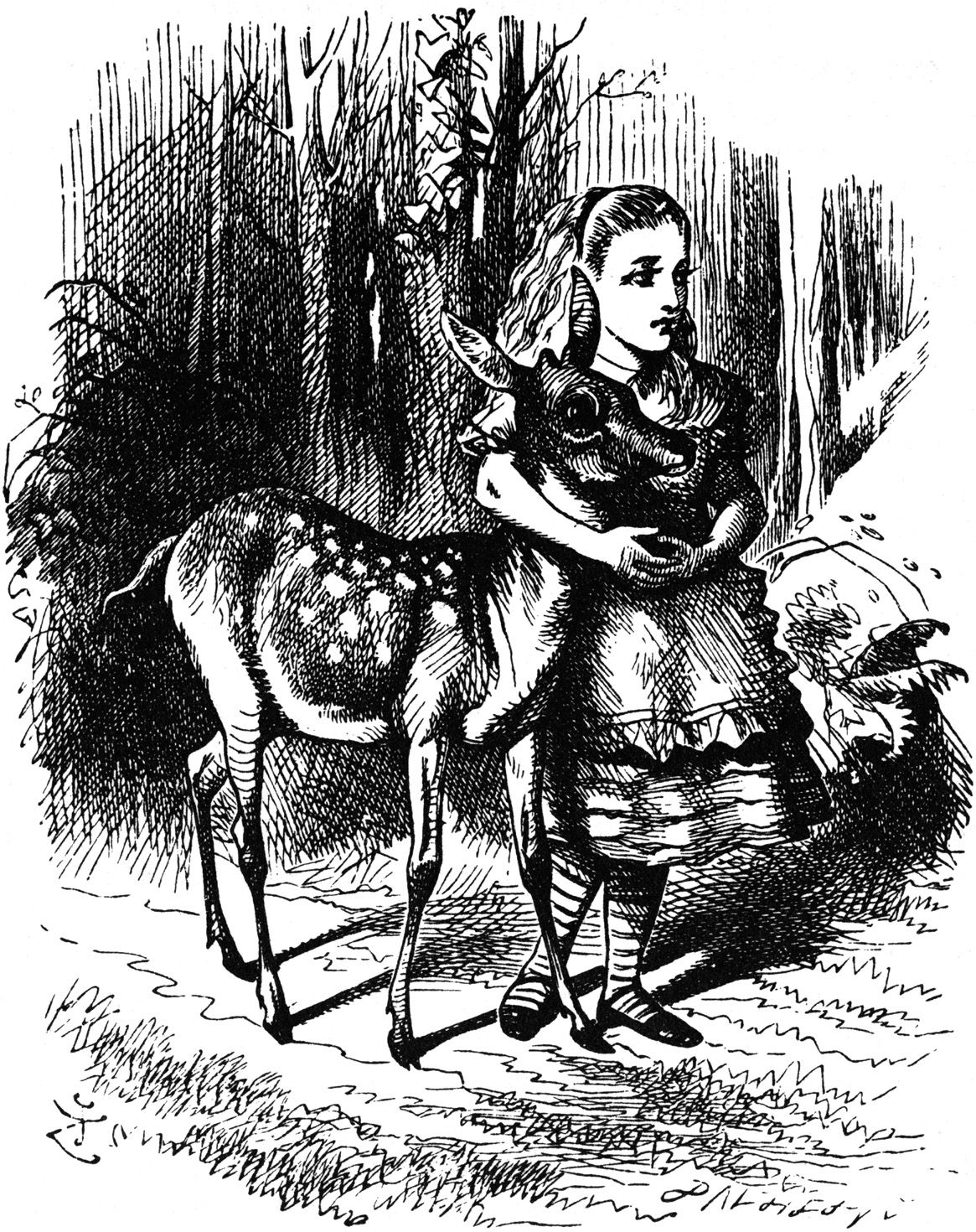 Pictures From Through The Looking Glass With Images Alice In