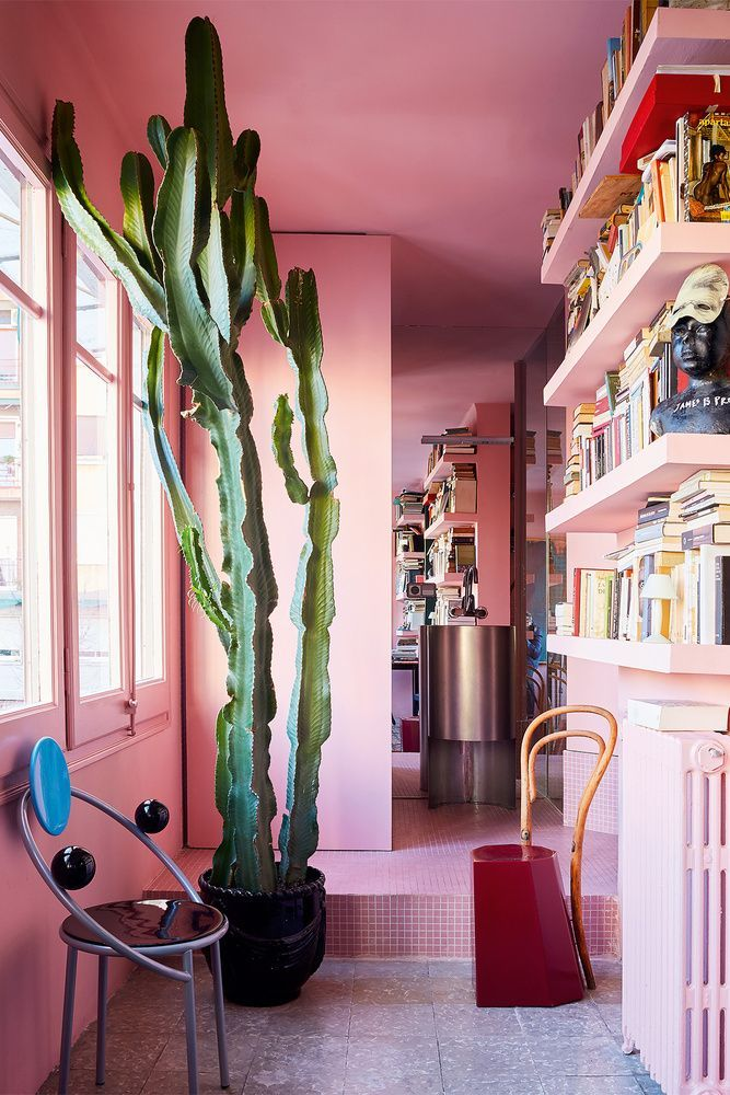pink walled home library with cactus interior dreaming pinterest interieur huis ideen and thuis