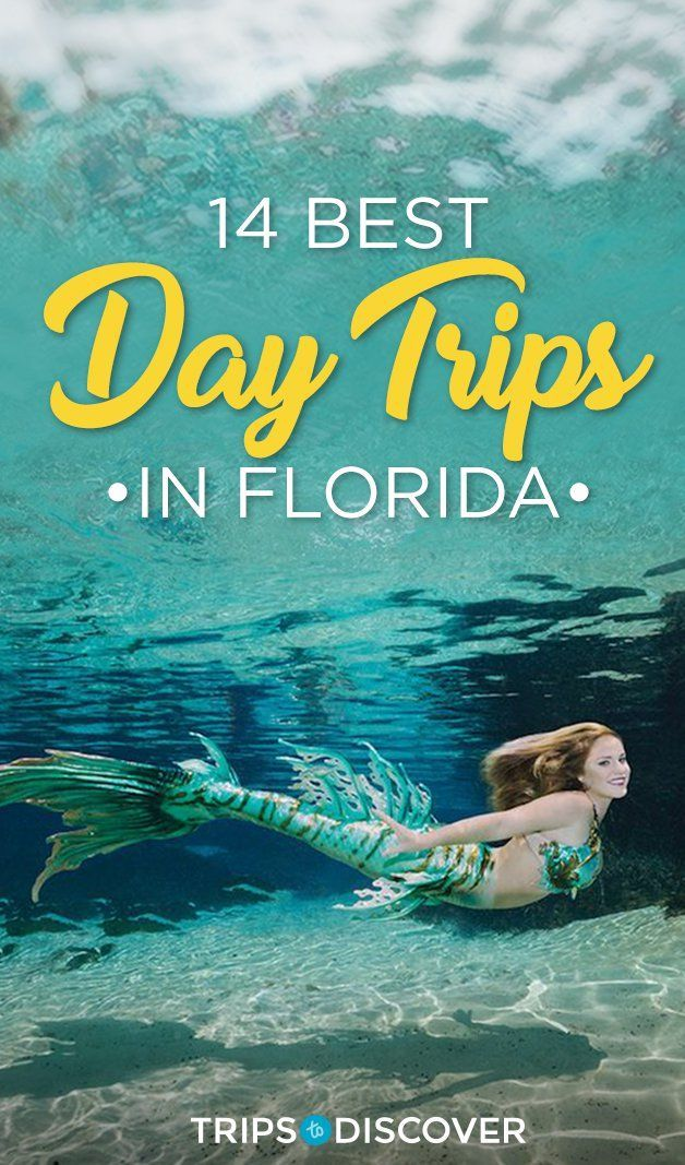 14 Fun Day Trips in Florida For Your Next Weekend Adventure -   13 travel destinations Florida trips ideas