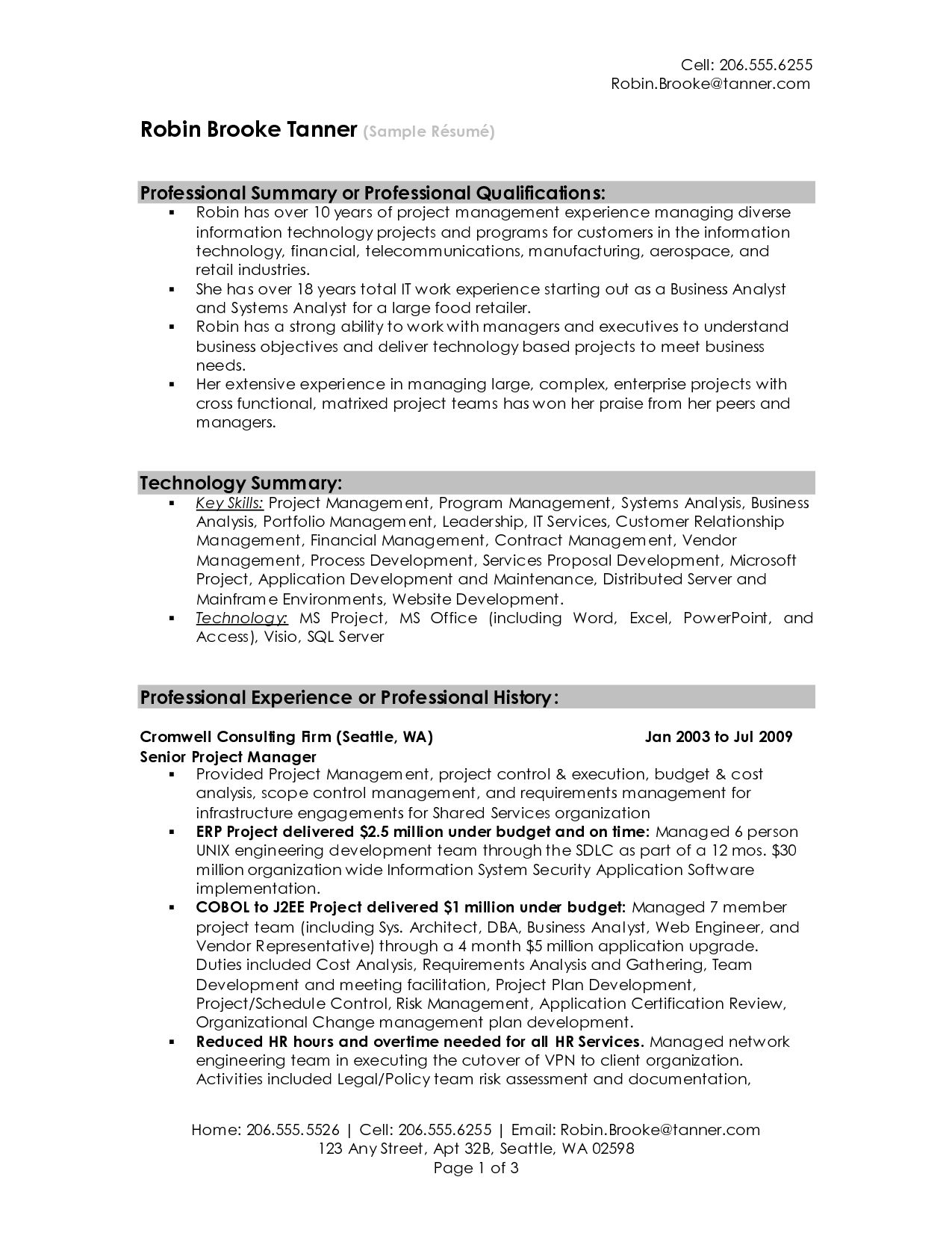 Examples Of Professional Summary For Resume