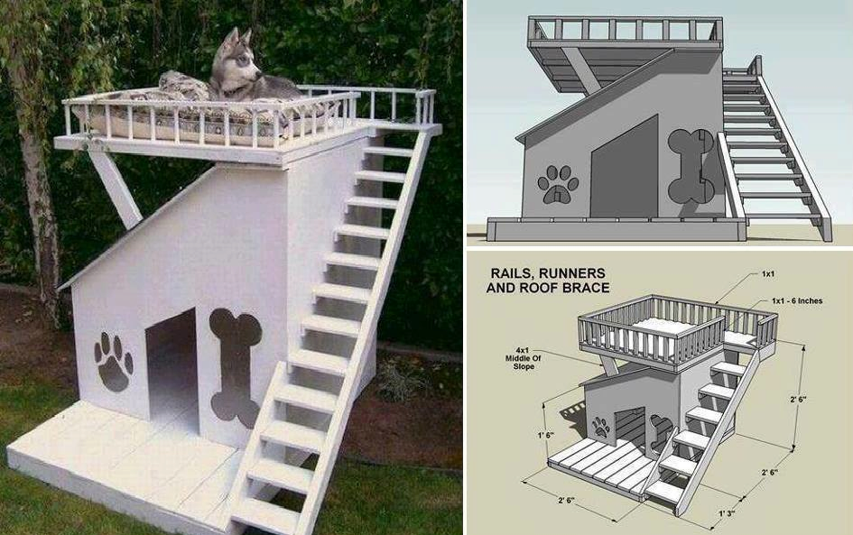 diy - dog house with roof top deck | pets - animais | pinterest