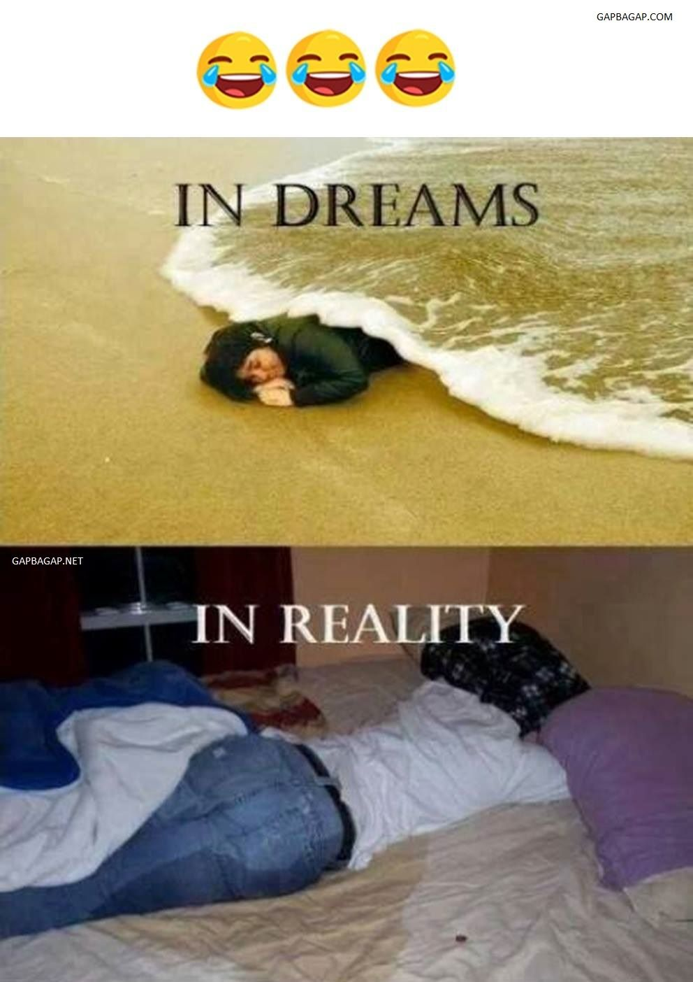 Funny Meme About Dreams Vs Reality Funny Memes Pinterest Humor Funny Pictures