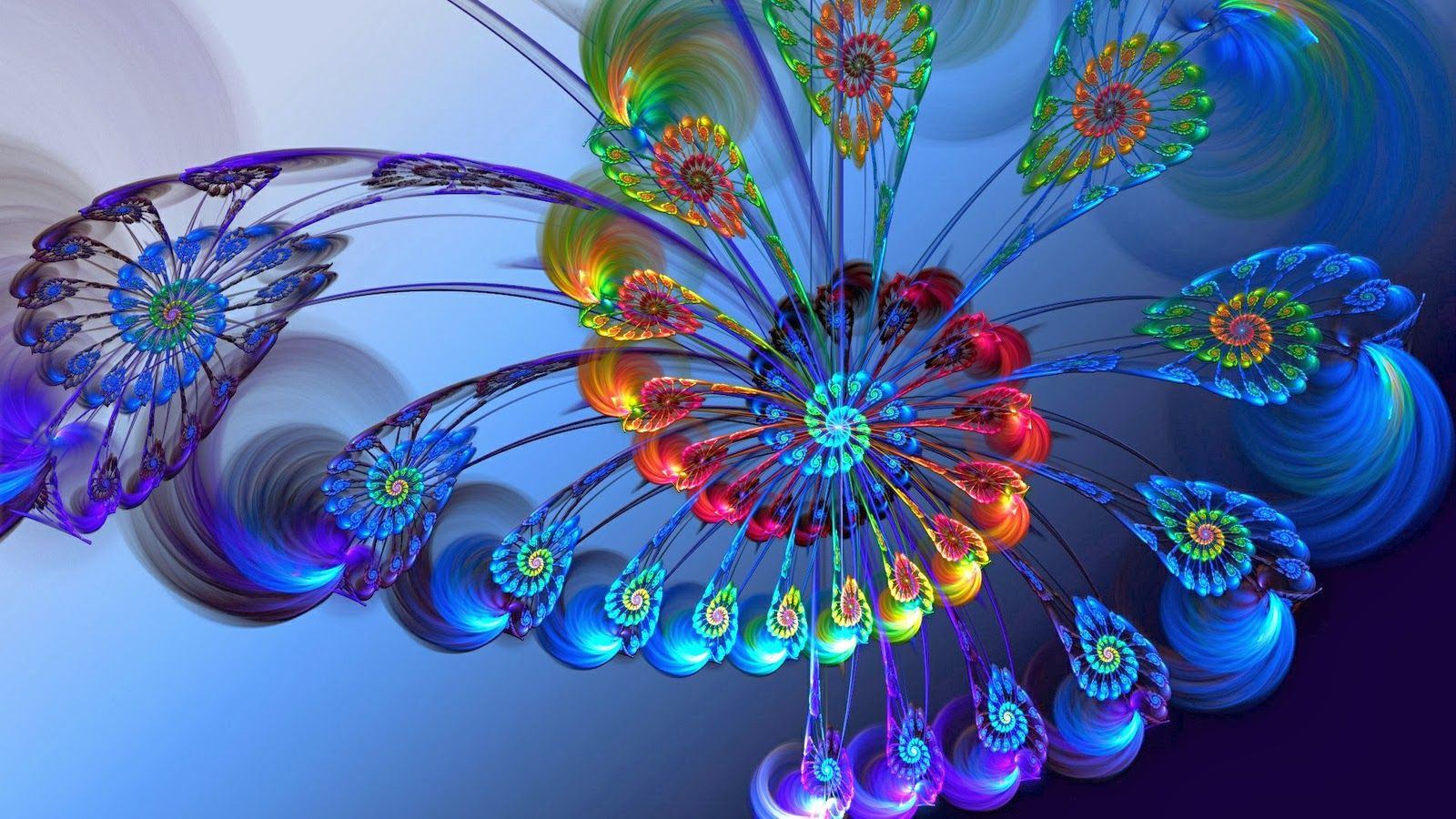 Desktop Hd Peacock Feather Wall Decor 3d Hd Pictures Ryan