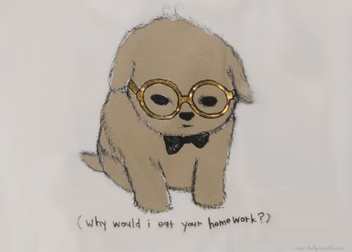 Puppy with glasses :)