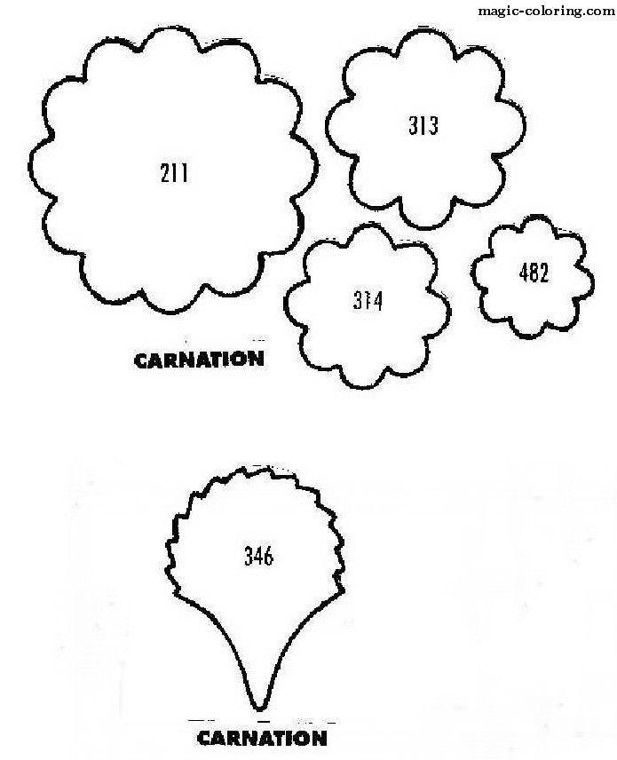 Magic Coloring Dianthus Carnation Flower Template Flower Template Carnation Flower Carnations
