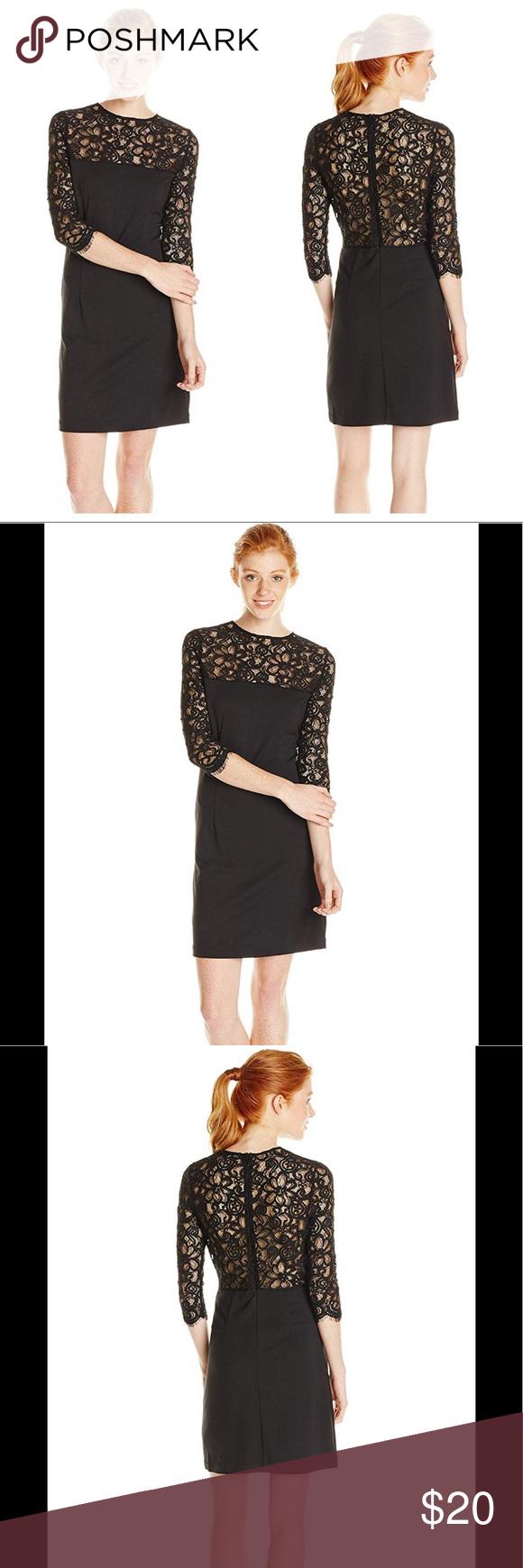 21++ Bb dakota lace ponte sheath dress trends