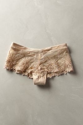 Chantelle Vendome Hipsters Nude S Intimates #anthroregistry