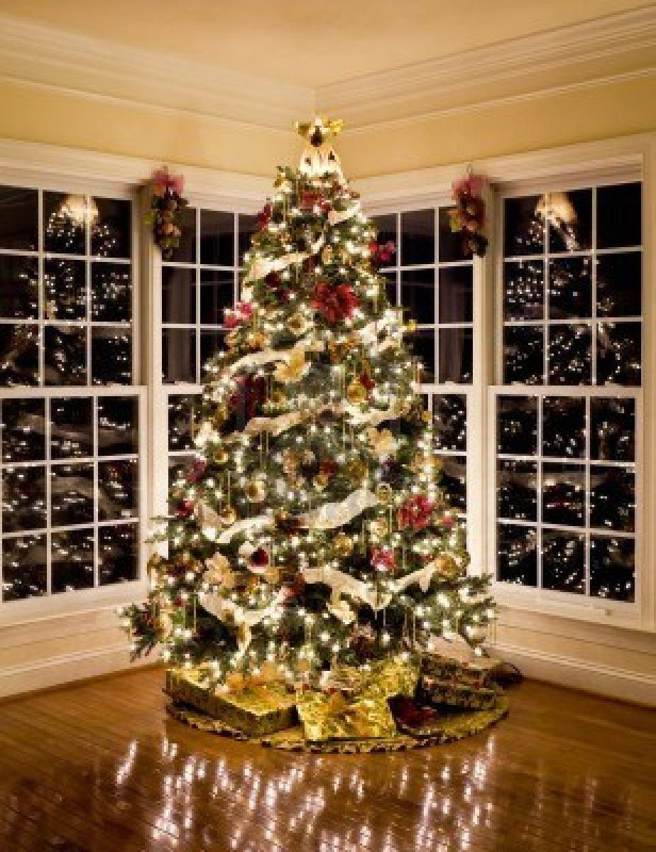 Christmas tree with presents and lights reflecting in windows around the tree