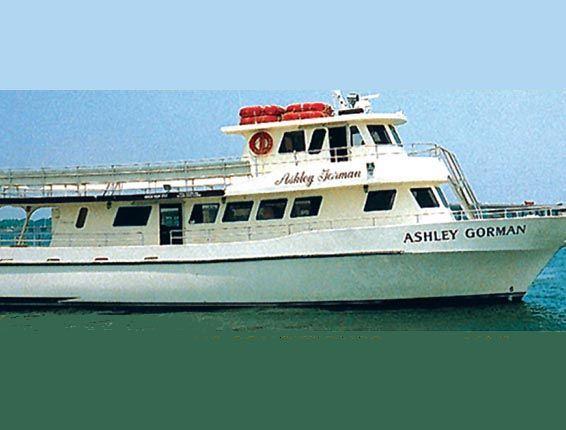 Cruise Boat To Shell Island Panama