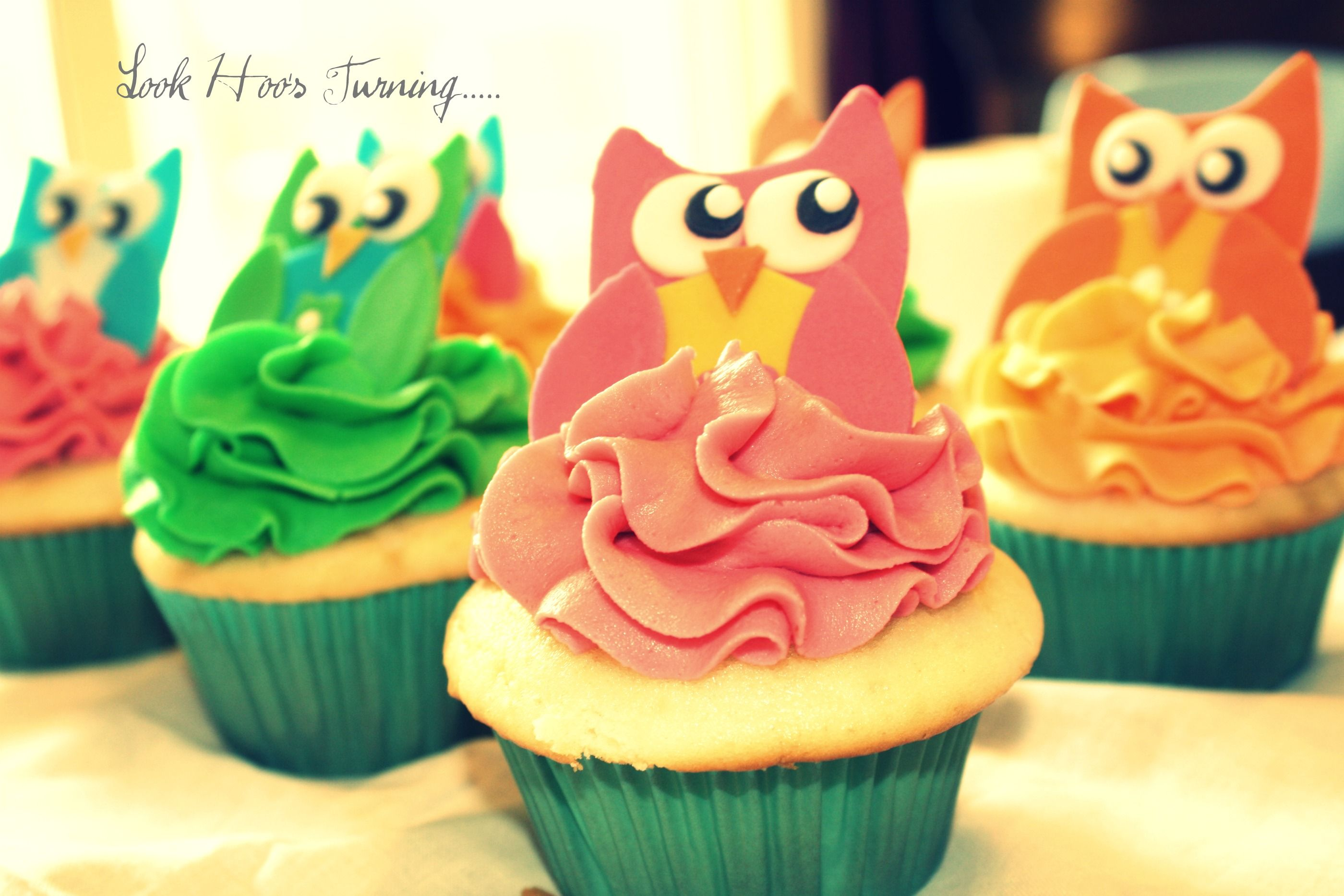 Owls  www.sugarandsprinklesco.com