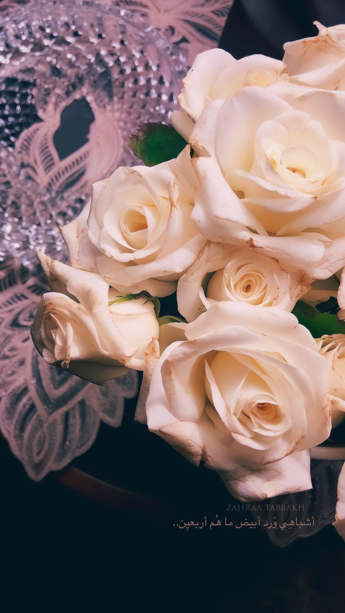 اشباهي ورد ابيض ما هم اربعين Flowers Rose Plants