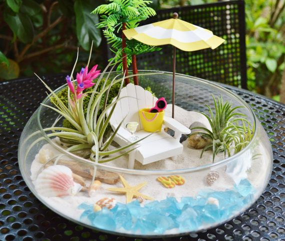 beach terrarium kit beach umbrella and beach chair 3 air plants 10 glass round bowl. Black Bedroom Furniture Sets. Home Design Ideas