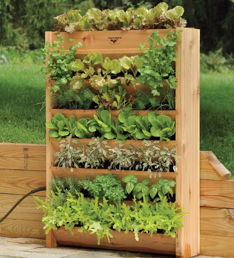 Vertical Garden With Irrigation System | Gardening Accessories | Our  Vertical Garden Has More Than 17 Linear Feet Of Growing Space In Just A  Two Foot ...
