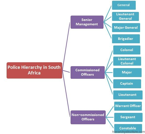 Police Hierarchy In South Africa Hierarchy Police South Africa