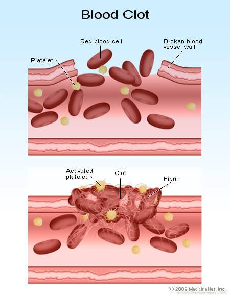how to make red blood cells