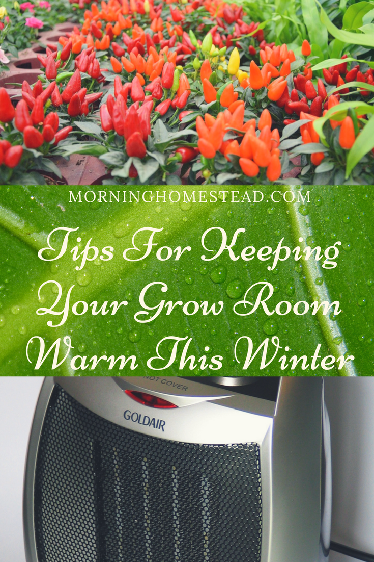 Benefits of a Grow Room/Grow Tent Heater u003du003du003d SEARCH TERMS benefits of a grow tent grow room heater with thermostat grow tent ventilation setup diy grow ... & Benefits of a Grow Room/Grow Tent Heater: u003du003du003d SEARCH TERMS ...
