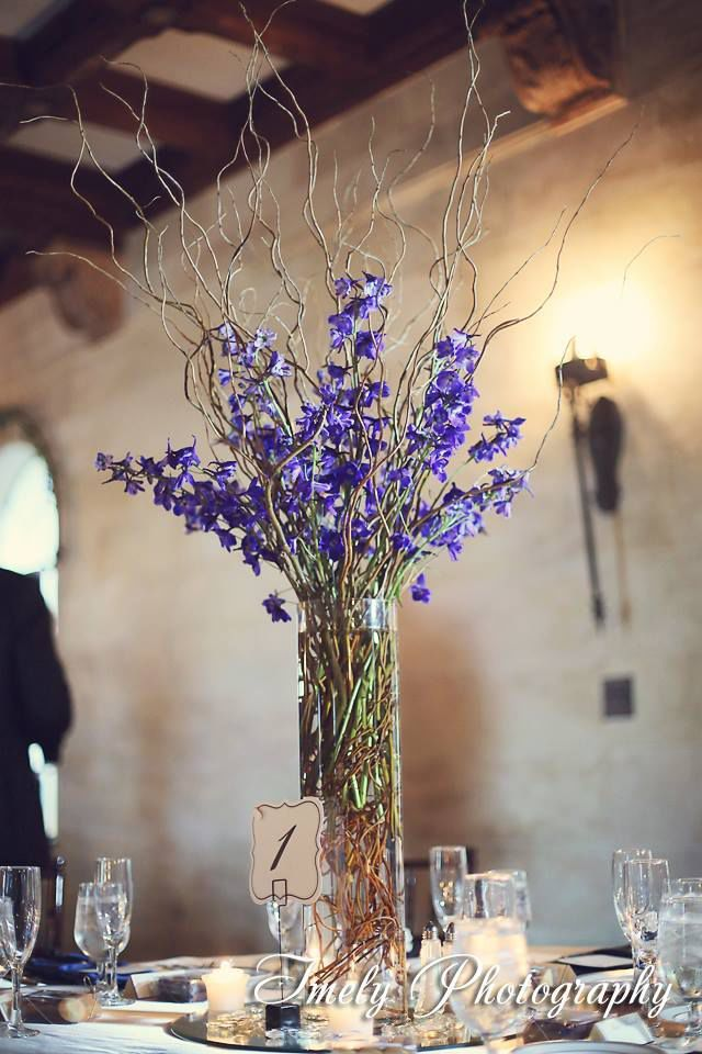 Curly willow in cylinder vase with blue delphinium google