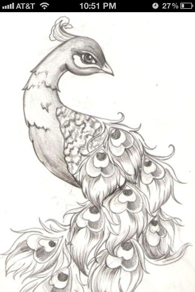 Peacock | Tattoo | Pinterest | Peacocks, Tattoo and Body art