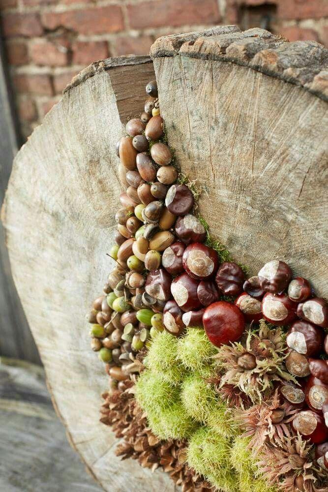 #Baumstamm #Eicheln #Kastanien #dekoherbst #Baumstamm #Eicheln #Kastanien #herfstdecoraties
