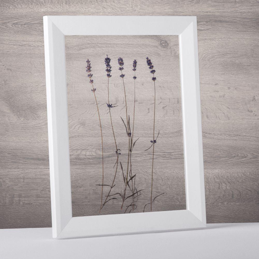Mit diesem Bilderrahmen können Ihre getrocknete Blumen in Szene ...