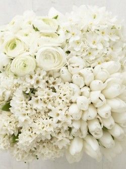 Love off white flowers theres just something romantic and innocent love off white flowers theres just something romantic and innocent about them mightylinksfo