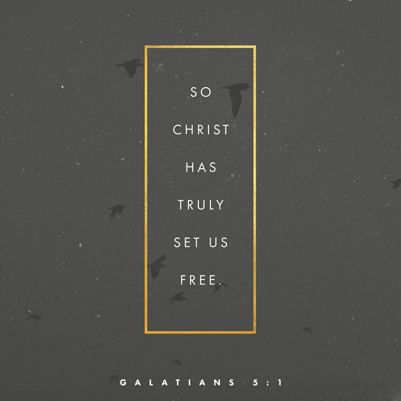 Galatians It Is For Freedom That Christ Has Set Us Free Stand Firm Then And Do Not Let Yourselves Be Burdened Again By A Yoke Of Slavery