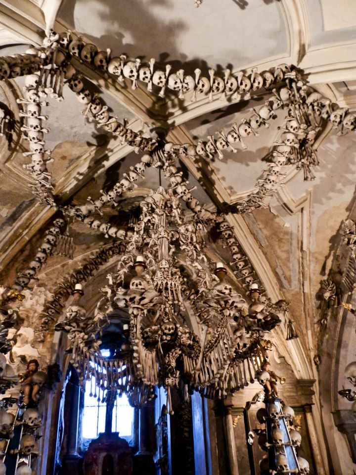 Chandelier Made Of Every Bone In The Human Body In The