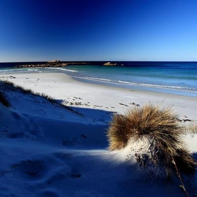 photo by Tim Crawshaw - Australia, sand dunes...